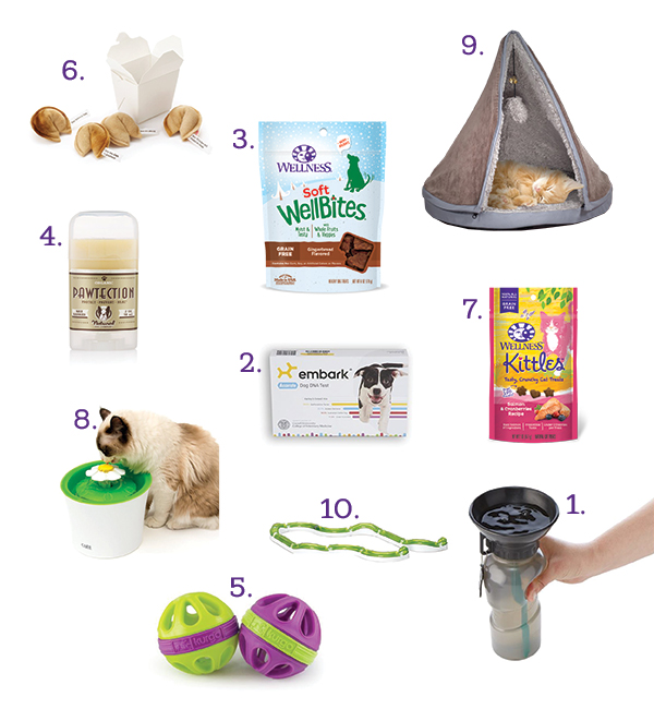 holiday gift guide for pets 2017