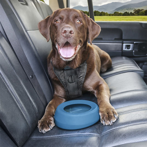 Kurgo Travel Splash Free Dog Bowl