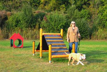 Dog Park 2