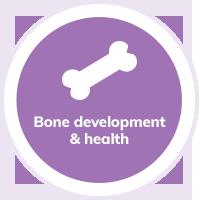 Cat Bone Dev