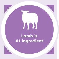 dog-lamb
