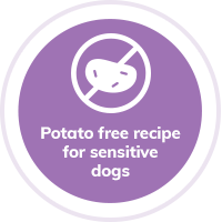 Dog Potato Free
