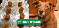 DIY Turkey Meatballs for Dogs Recipe