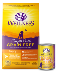 Find the Right Puppy Food