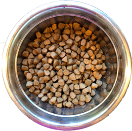 bowl two of dog food showing low diversity